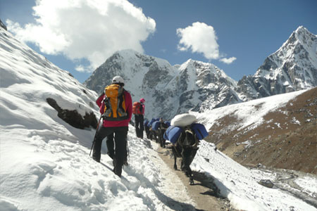 Everest Kalapather Trekking
